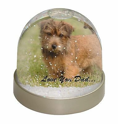 Norwich/Norfolk Terrier 'Love You Dad' Photo Snow Dome Waterball Stock, DAD-80GL