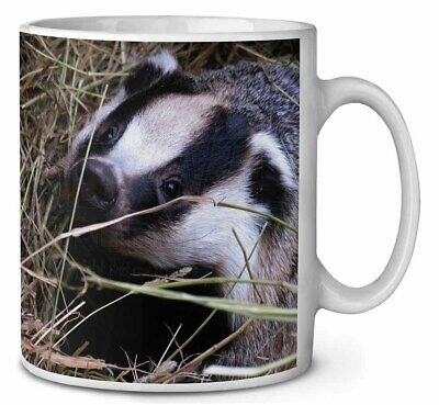 Badger in Straw Coffee/Tea Mug Christmas Stocking Filler Gift Idea, ABA-1MG