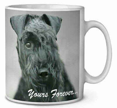 Kerry Blue Terrier 'Yours Forever' Coffee/Tea Mug Christmas Stocking , AD-KB1yMG