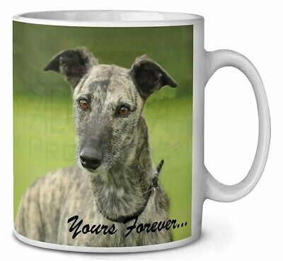 Greyhound Dog 'Yours Forever' Coffee/Tea Mug Christmas Stocking Fille, AD-LU7yMG