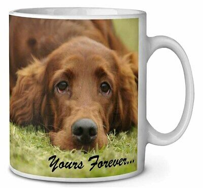 Red Setter Dog 'Yours Forever' Coffee/Tea Mug Christmas Stocking Fill, AD-RS2yMG