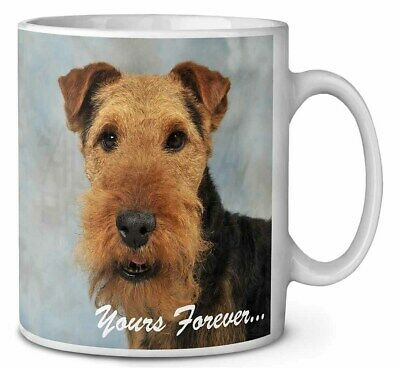 Welsh Terrier 'Yours Forever' Coffee/Tea Mug Christmas Stocking Fille, AD-WT1yMG