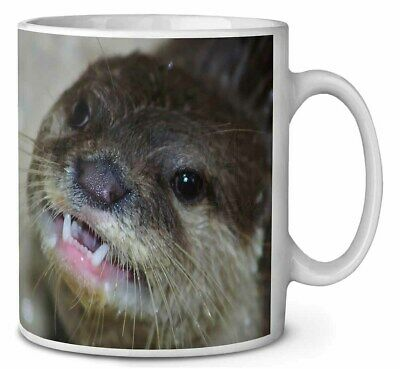 Cheeky Otters Face Coffee/Tea Mug Christmas Stocking Filler Gift Idea, AO-1MG
