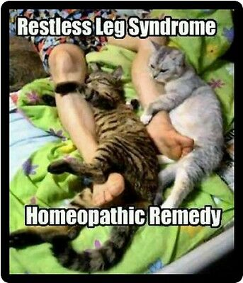 Funny Cat Humor Restless Leg Syndrome Refrigerator Magnet