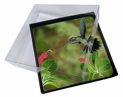 4x Green Hermit Humming Bird Picture Table Coasters Set in Gift Box, AB-95C