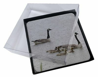 4x Geese+Goslings in Heavy Rain Picture Table Coasters Set in Gift Box, AB-G5C