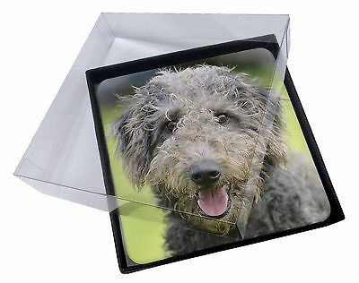 4x Beddlington Terrier Dog Picture Table Coasters Set in Gift Box, AD-BED1C