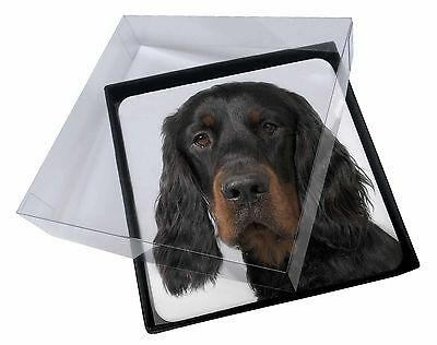 4x Gordon Setter Picture Table Coasters Set in Gift Box, AD-GOR3C