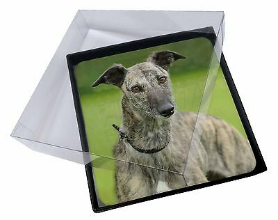 4x Lurcher Dog Picture Table Coasters Set in Gift Box, AD-LU7C