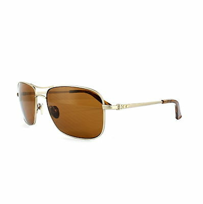 7244a4dd7042 Calvin Klein Sunglasses CK7497SP 700 Japanese Gold Brown Polarized