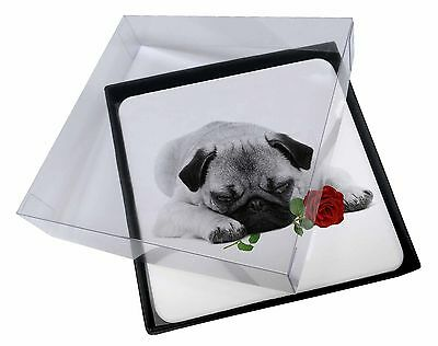 4x Pug (B+W Photo) with Red Rose Picture Table Coasters Set in Gift B, AD-P92R2C