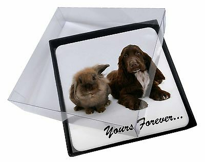 4x Animals 'Yours Forever' Sentiment Picture Table Coasters Set in Gif, AD-SC2yC