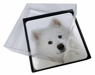 4x Samoyed Dog Picture Table Coasters Set in Gift Box, AD-SO73C
