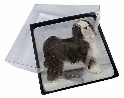 4x Tibetan Terrier Dog Picture Table Coasters Set in Gift Box, AD-TT3C