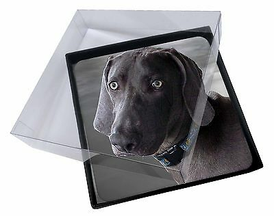 4x Weimaraner Dog  Picture Table Coasters Set in Gift Box, AD-W78C