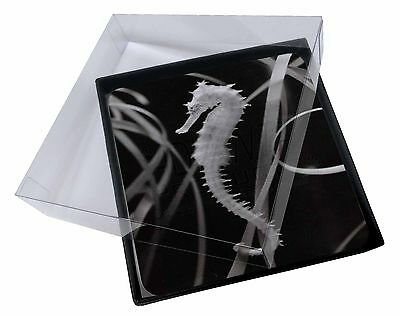 4x Seahorse Picture Table Coasters Set in Gift Box, AF-24C