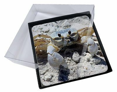 4x Crab on Sand Picture Table Coasters Set in Gift Box, AF-C1C