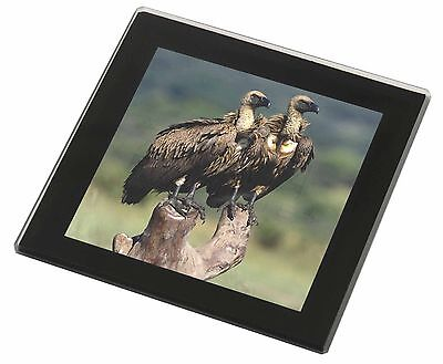 Vultures on Watch Black Rim Glass Coaster Animal Breed Gift, AB-92GC