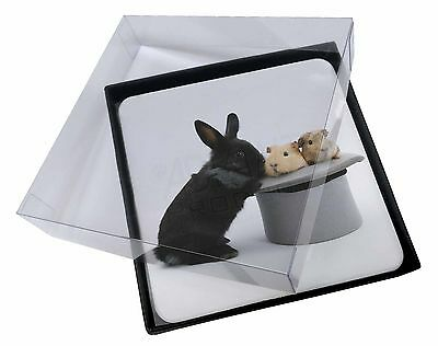 4x Rabbit and Guinea Pigs in Top Hat Picture Table Coasters Set in Gift , AR-10C