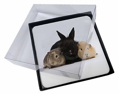 4x Rabbit and Guinea Pigs Print Picture Table Coasters Set in Gift Box, AR-9C