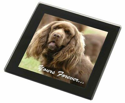 Sussex Spaniel 'Yours Forever' Black Rim Glass Coaster Animal Breed , AD-SUS1yGC