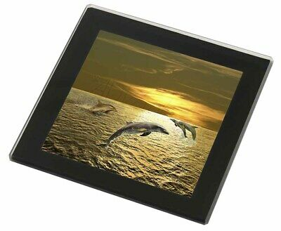 Gold Sea Sunset Dolphins Black Rim Glass Coaster Animal Breed Gift, AF-D4GC