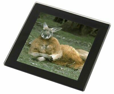Cheeky Kangaroo Black Rim Glass Coaster Animal Breed Gift, AK-1GC