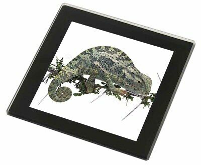 Chameleon Lizard Black Rim Glass Coaster Animal Breed Gift, AR-L5GC