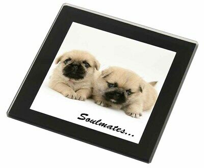 Pugzu Puppy Dogs 'Soulmates' Black Rim Glass Coaster Animal Breed Gif, SOUL-42GC