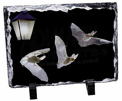 A-BAT2SL Bats by Lantern Night Light Photo Slate Christmas Gift Ornament