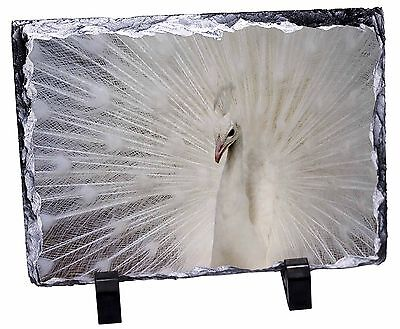 White Feathers Peacock Photo Slate Christmas Gift Ornament, AB-PE19SL