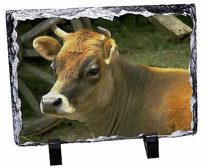 Red Cow Photo Slate Christmas Gift Ornament, ACO-1SL