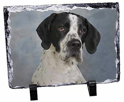 English Pointer Dog Photo Slate Christmas Gift Ornament, AD-EP1SL