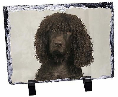 Irish Water Spaniel Dog Photo Slate Christmas Gift Ornament, AD-IWSSL