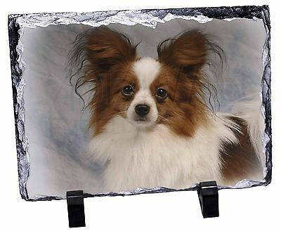 Papillon Dog Photo Slate Christmas Gift Ornament, AD-PA1SL