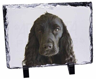 Black Cocker Spaniel Dog Photo Slate Christmas Gift Ornament, AD-SC8SL