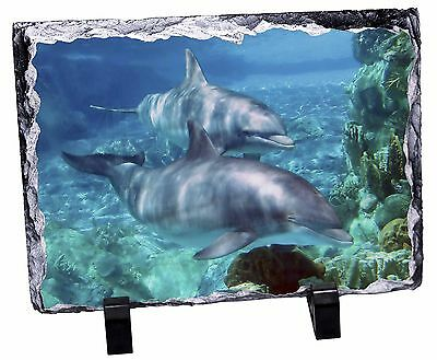 Dolphins Photo Slate Christmas Gift Ornament, AF-D3SL