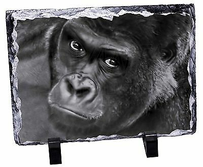 Handsome Silverback Gorilla Photo Slate Christmas Gift Ornament, AM-6SL
