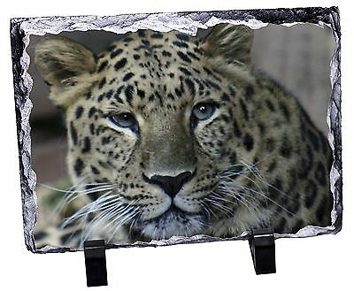 Leopard Photo Slate Christmas Gift Ornament, AT-22SL