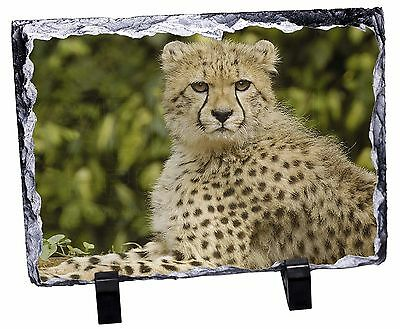 Cheetah Photo Slate Christmas Gift Ornament, AT-40SL