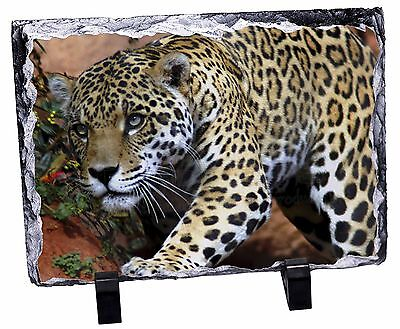 Jaguar Photo Slate Christmas Gift Ornament, AT-4SL
