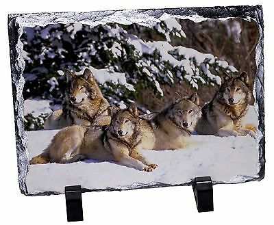 Wolves in Snow Photo Slate Christmas Gift Ornament, AW-8SL