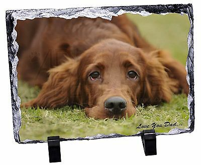 Red Setter Dpg 'Love You Dad' Photo Slate Christmas Gift Ornament, DAD-93SL