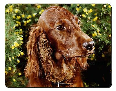 Irish Red Setter Dog Computer Mouse Mat Christmas Gift Idea, AD-RS1M