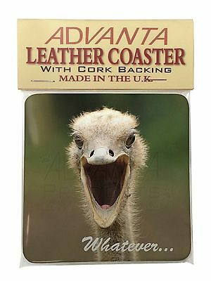 Ostritch with 'Whatever' Single Leather Photo Coaster Animal Breed Gif, AB-OS2SC