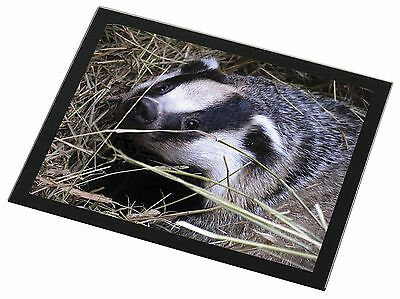 Badger in Straw Black Rim Glass Placemat Animal Table Gift, ABA-1GP