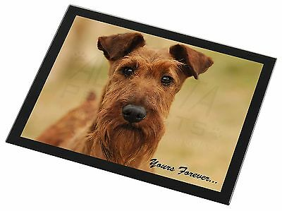 Irish Terrier Dog /'Yours Forever/' Single Leather Photo Coaster Animal AD-IT1ySC