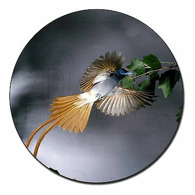 Humming Bird Fridge Magnet Stocking Filler Christmas Gift, AB-91FM
