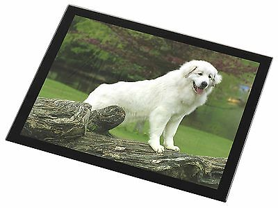 Pyrenean Mountain Dog Black Rim Glass Placemat Animal Table Gift, AD-PM1GP