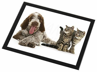 Italian Spinone Dog and Kittens Black Rim Glass Placemat Animal Table , AD-SP1GP